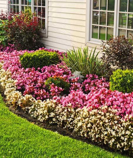 King's Landscape LLC Garden Design