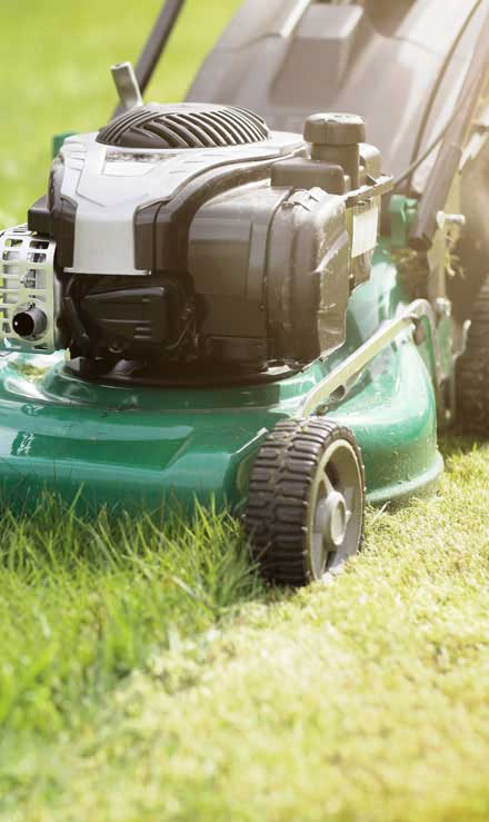King's Lawn Care LLC Residential Lawn Mowing